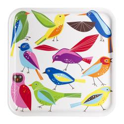 BÄRBAR tray, bird