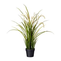 FEJKA artificial potted plant, grass Diameter of plant pot: 10 cm Height: 52 cm
