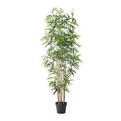 "FEJKA artificial potted plant, bamboo Diameter of plant pot: 8 ¼ "" Height: 69 "" Diameter of plant pot: 21 cm Height: 175 cm"