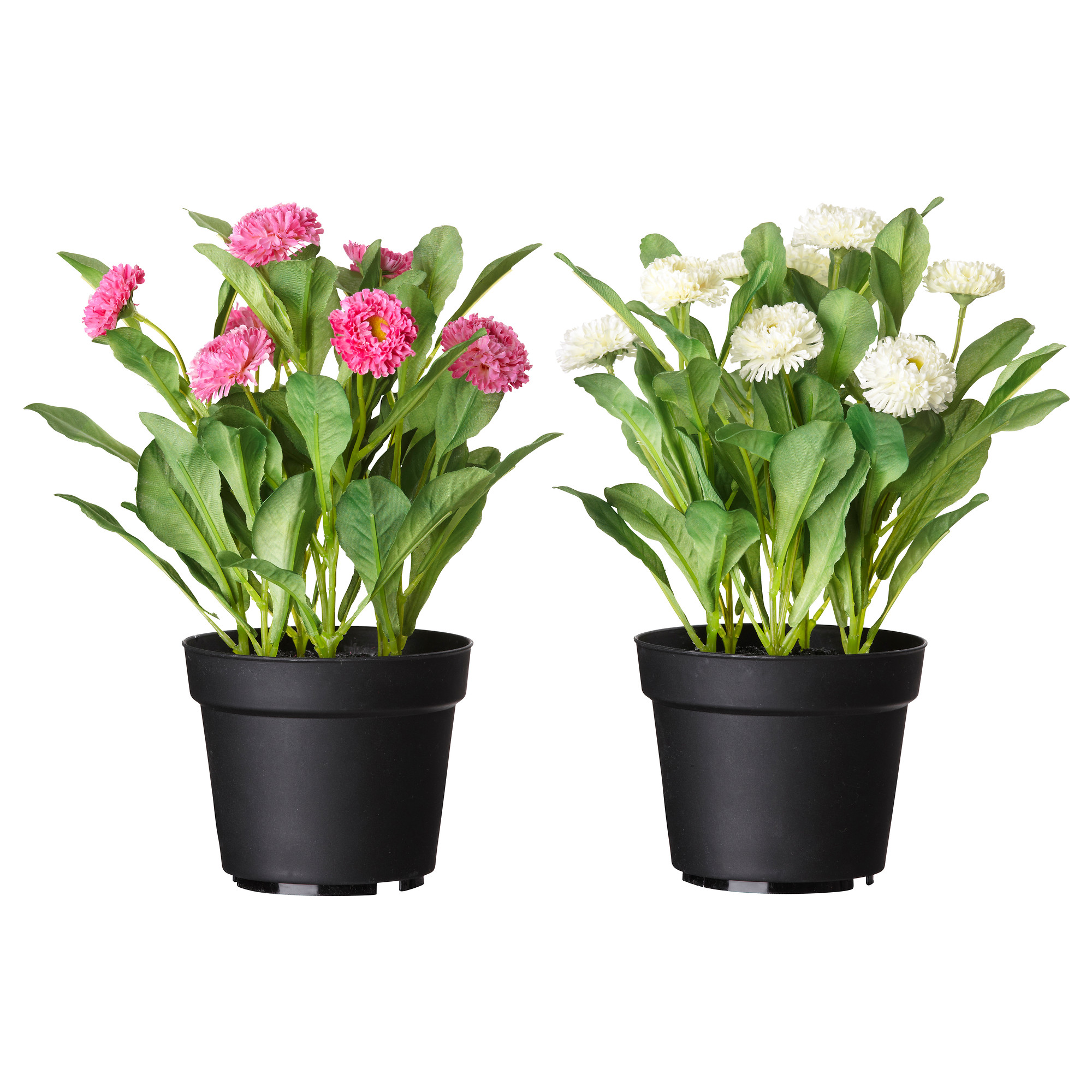 fejka artificial potted plant common daisy assorted colors diameter of plant pot 4 artificial plants for office decor