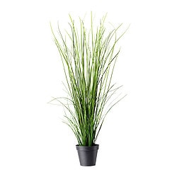 FEJKA artificial potted plant, grass Diameter of plant pot: 17 cm Height: 105 cm