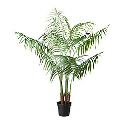 "FEJKA artificial potted plant, Areca palm Diameter of plant pot: 8 ¼ "" Height: 65 "" Diameter of plant pot: 21 cm Height: 165 cm"