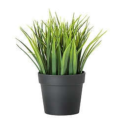 "FEJKA artificial potted plant, grass Diameter of plant pot: 4 ¼ "" Height: 7 ¾ "" Diameter of plant pot: 10.5 cm Height: 20 cm"