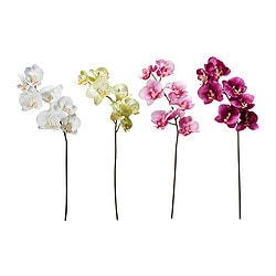 SMYCKA artificial flower, Orchid assorted colours Height: 43 cm