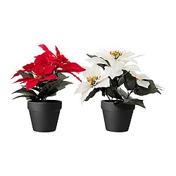 FEJKA artificial potted plant, assorted colours, Poinsettia Diameter of plant pot: 12 cm Height: 28 cm