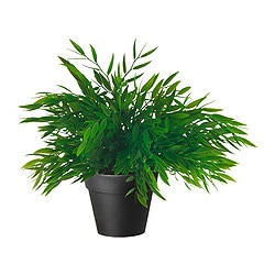 FEJKA artificial potted plant, House bamboo Diameter of plant pot: 10 cm Height: 28 cm
