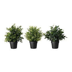 FEJKA artificial potted plant, assorted, herbs Diameter of plant pot: 10 cm Height: 24 cm