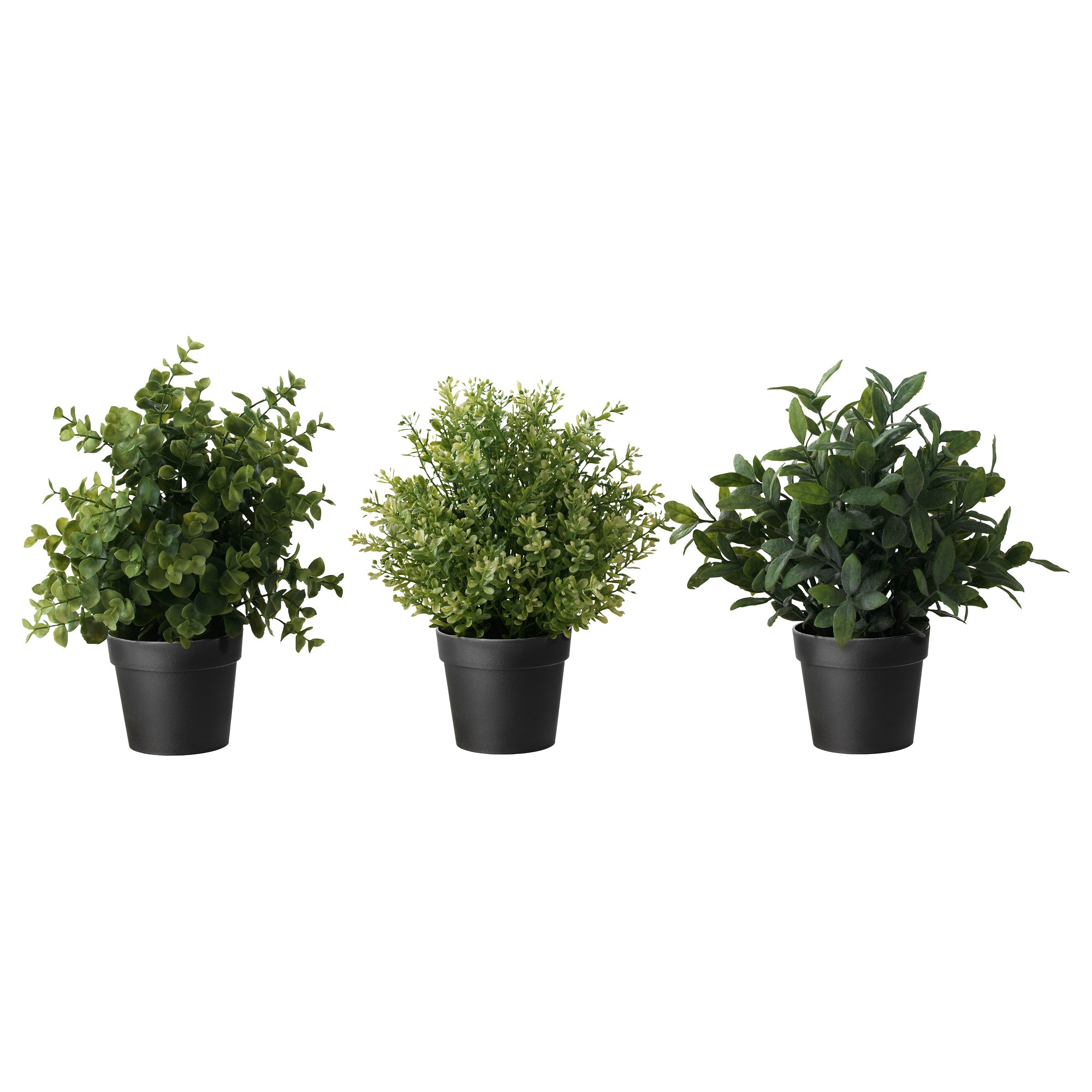 Artificial plants for kitchen - Inter Ikea Systems B V 1999 2017 Privacy Policy