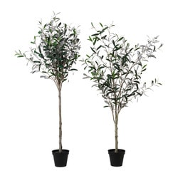 "FEJKA artificial potted plant, Olive tree Diameter of plant pot: 6 ¾ "" Height of plant: 57 ½ "" Diameter of plant pot: 17 cm Height of plant: 146 cm"
