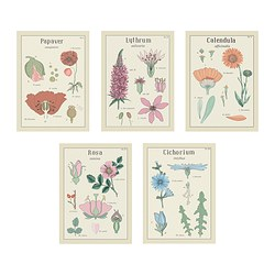 KORT art card, vintage flowers Width: 13 cm Height: 18 cm Package quantity: 5 pack
