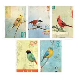 KORT art card, birds Width: 10 cm Height: 15 cm Package quantity: 5 pack