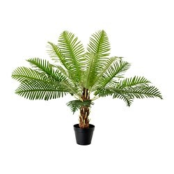 FEJKA artificial potted plant, Fern palm Diameter of plant pot: 17 cm Height: 70 cm