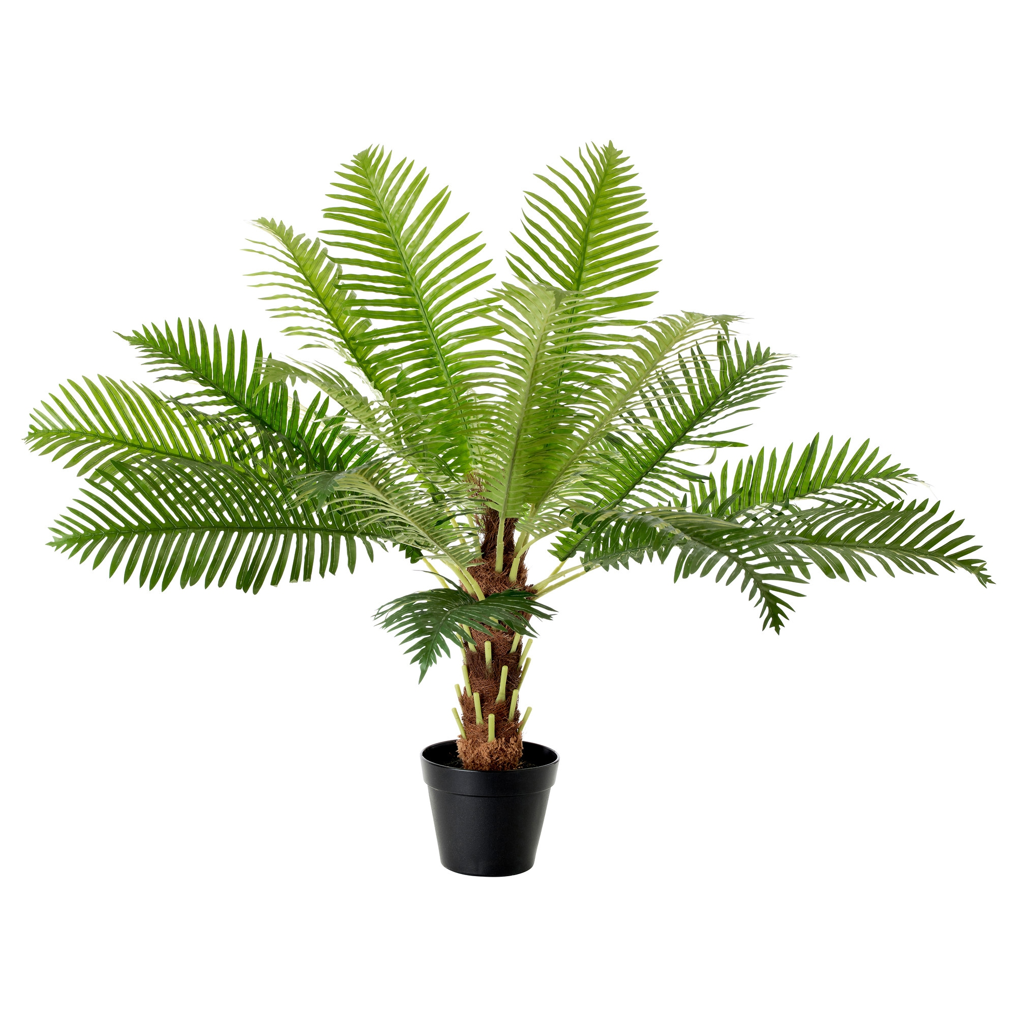 fejka artificial potted plant fern palm height 70 cm diameter of plant pot