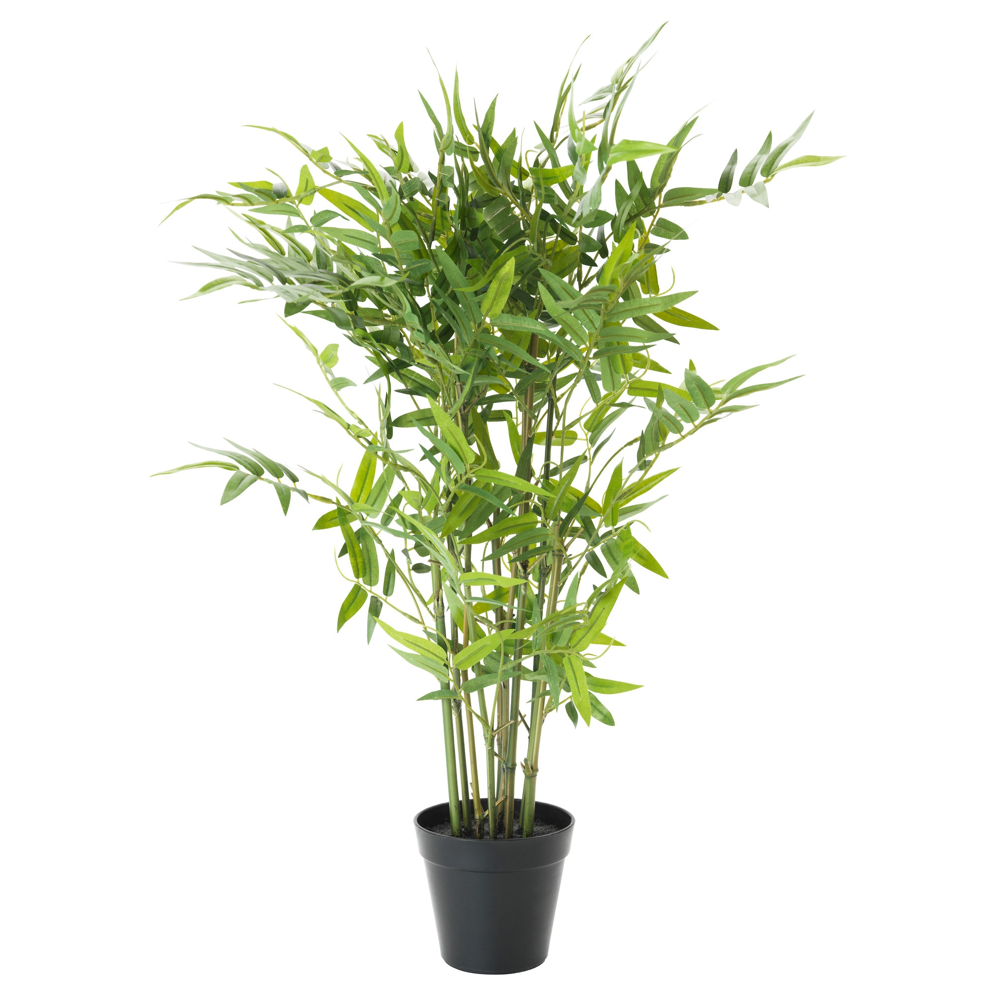living room plant. FEJKA artificial potted plant  bamboo Height 24 Diameter of pot Artificial plants flowers Plants pots stands IKEA