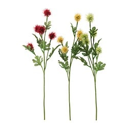 SMYCKA artificial flower, Stirlingia assorted colours Height: 50 cm