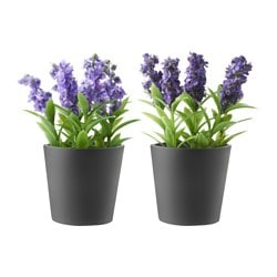 PORÖST artificial potted plant with pot, assorted colours Lavender Diameter of plant pot: 5 cm Height: 13 cm