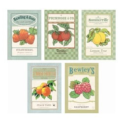 KORT art card, vintage seeds Width: 10 cm Height: 15 cm Package quantity: 5 pack