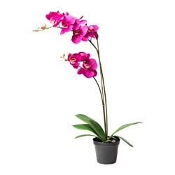 FEJKA pianta artificiale, Orchidea lilla scuro Diametro vaso: 12 cm Altezza pianta: 65 cm