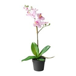 FEJKA pianta artificiale, Orchidea lilla Diametro vaso: 9 cm Altezza pianta: 38 cm