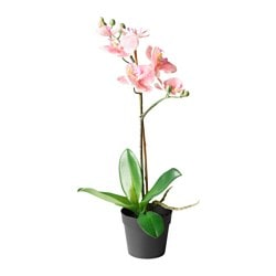 FEJKA pianta artificiale, Orchidea rosa Diametro vaso: 9 cm Altezza pianta: 38 cm