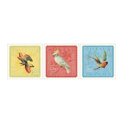 PJÄTTERYD picture, set of 3, exotic birds Width: 30 cm Height: 30 cm