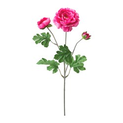 SMYCKA artificial flower, Ranunculus pink Height: 45 cm