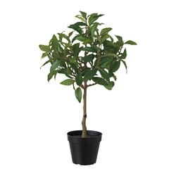 FEJKA artificial potted plant, pepper Diameter of plant pot: 12 cm Height of plant: 50 cm