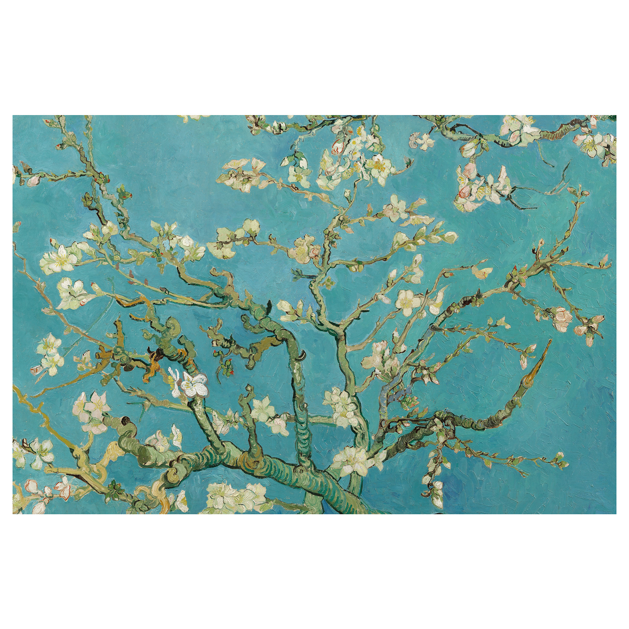 BJÖRKSTA Picture - IKEA for Almond Blossom Van Gogh Poster  55nar