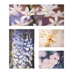 GRÖNBY picture, set of 4, floral freshness Width: 84 cm Height: 124.5 cm