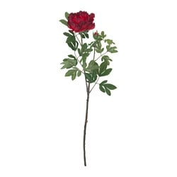 SMYCKA artificial flower, Peony, red