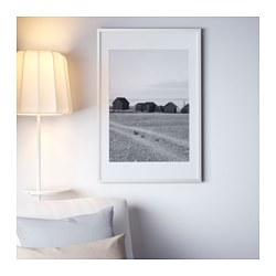 Ribba Frame White Ikea Family Member Price