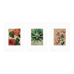 TRILLING poster, set of 3, rustic flowers Width: 21 cm Height: 30 cm