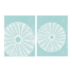 TVILLING poster, set of 2, sea urchins Width: 30 cm Height: 40 cm