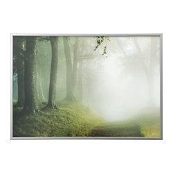 BJÖRKSTA picture with frame, woodland way, aluminium-colour