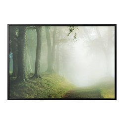 "BJÖRKSTA picture and frame, woodland way, black Width: 78 ¾ "" Height: 55 "" Width: 200 cm Height: 140 cm"