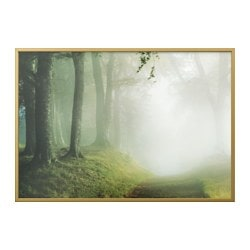 BJÖRKSTA, Picture and frame, woodland way, brass color