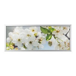 "BJÖRKSTA picture and frame, cherry blossom, aluminum color Width: 55 "" Height: 22 "" Width: 140 cm Height: 56 cm"