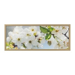 "BJÖRKSTA picture and frame, cherry blossom, brass color Width: 55 "" Height: 22 "" Width: 140 cm Height: 56 cm"