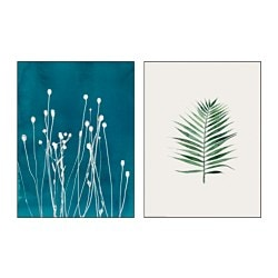 "TVILLING poster, set of 2, Swaying straws Width: 12 ¼ "" Height: 16 ¼ "" Width: 31 cm Height: 41 cm"