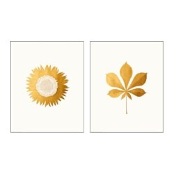 TVILLING poster, set of 2, golden leaves Width: 40 cm Height: 50 cm