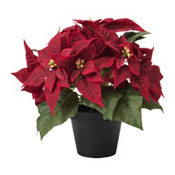 FEJKA artificial potted plant, Poinsettia red Diameter of plant pot: 12 cm Height of plant: 30 cm