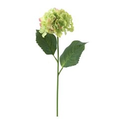 SMYCKA artificial flower, Hydrangea, green Height: 60 cm