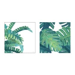 "TVILLING poster, set of 2, Big leaves II Width: 19 ¾ "" Height: 19 ¾ "" Width: 50 cm Height: 50 cm"