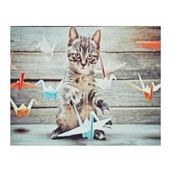 "EDELVIK poster, Cat with origami birds Width: 20 "" Height: 16 ¼ "" Width: 51 cm Height: 41 cm"