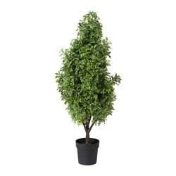 FEJKA artificial potted plant, in/outdoor, Box