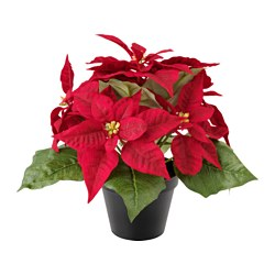 FEJKA, Artificial potted plant, Poinsettia red