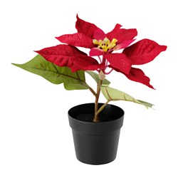 FEJKA artificial potted plant, Poinsettia red