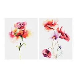 EDELVIK poster, set of 2, Roses and poppies