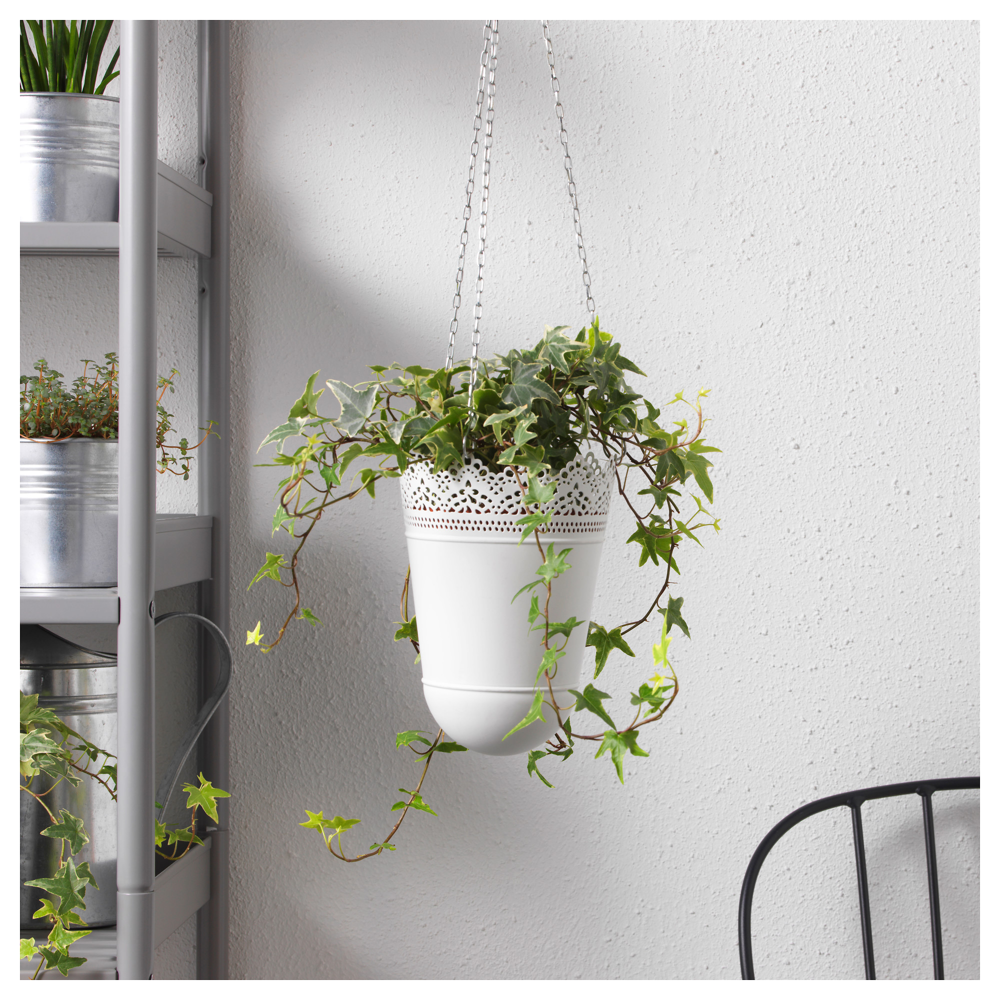 accroche plante mural interesting etape with accroche plante mural great sac dchets verts. Black Bedroom Furniture Sets. Home Design Ideas