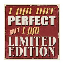 EDELVIK poster, I am not perfect